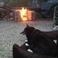 dog resting by Precast Outdoor Fireplace